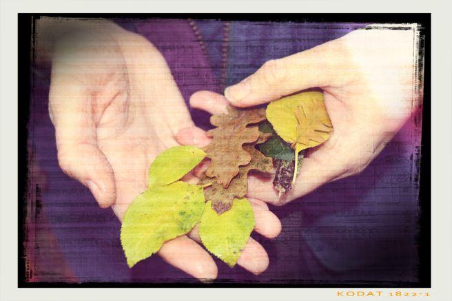 image for Autumn poem